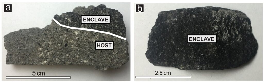 Two juvenile clasts from Sinabung Volcano. Clast A shows a medium-light grey host rock combined with a darker grey enclave towards the top. Clast B is the darker enclave.